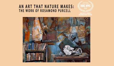 Rosamond Purcell Film