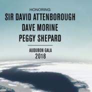 Audubon Gala 2018